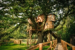 treetops-treehouse-best-DSC_8558