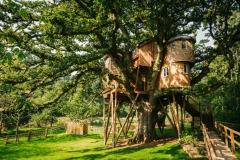 treetops-treehouse-better-DSC_8608